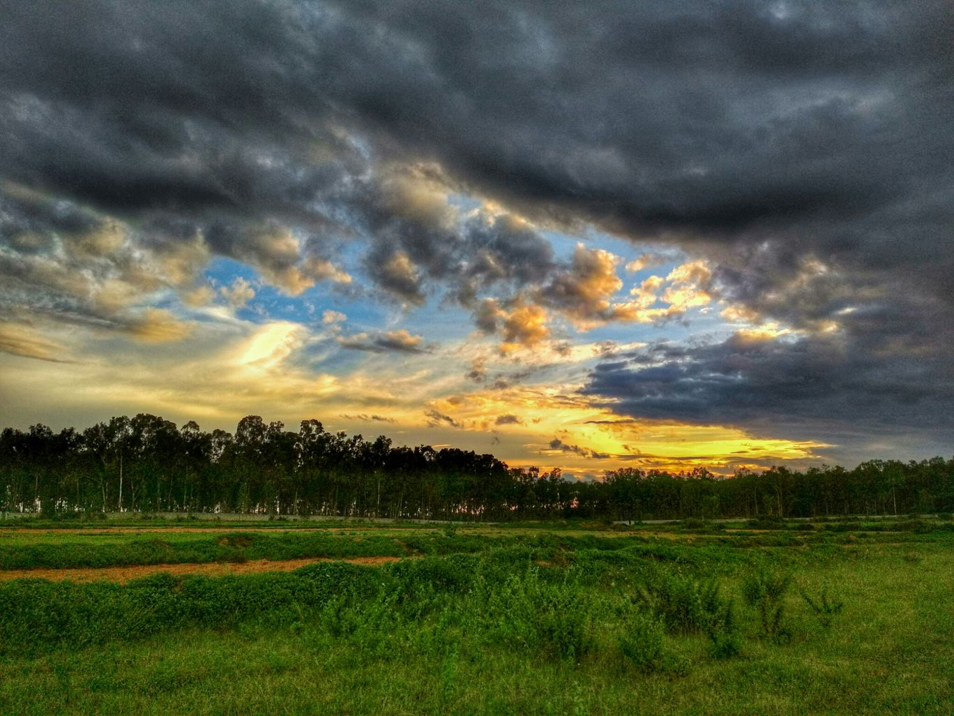 Photo of Avalahalli State Forest By DEEKSHU