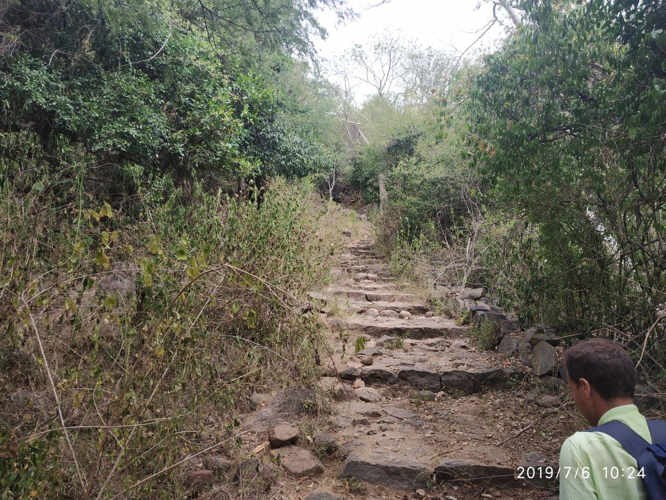 Photo of Vellagavi Forest By Praba Prakash