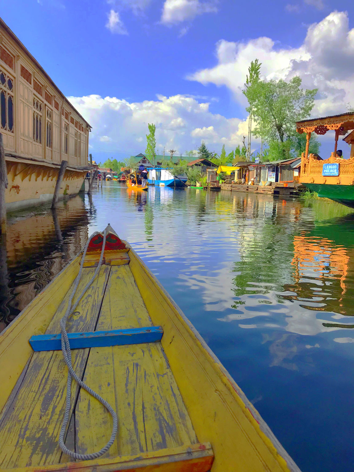 Photo of Exotic kashmir trip in April 2019 By Lifeinaplatter