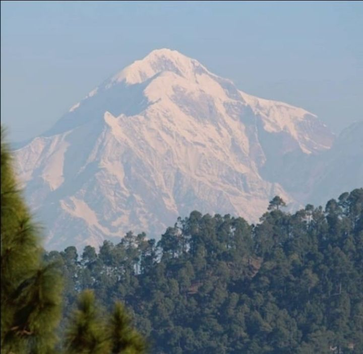 Photo of Almora By Hippie Heart
