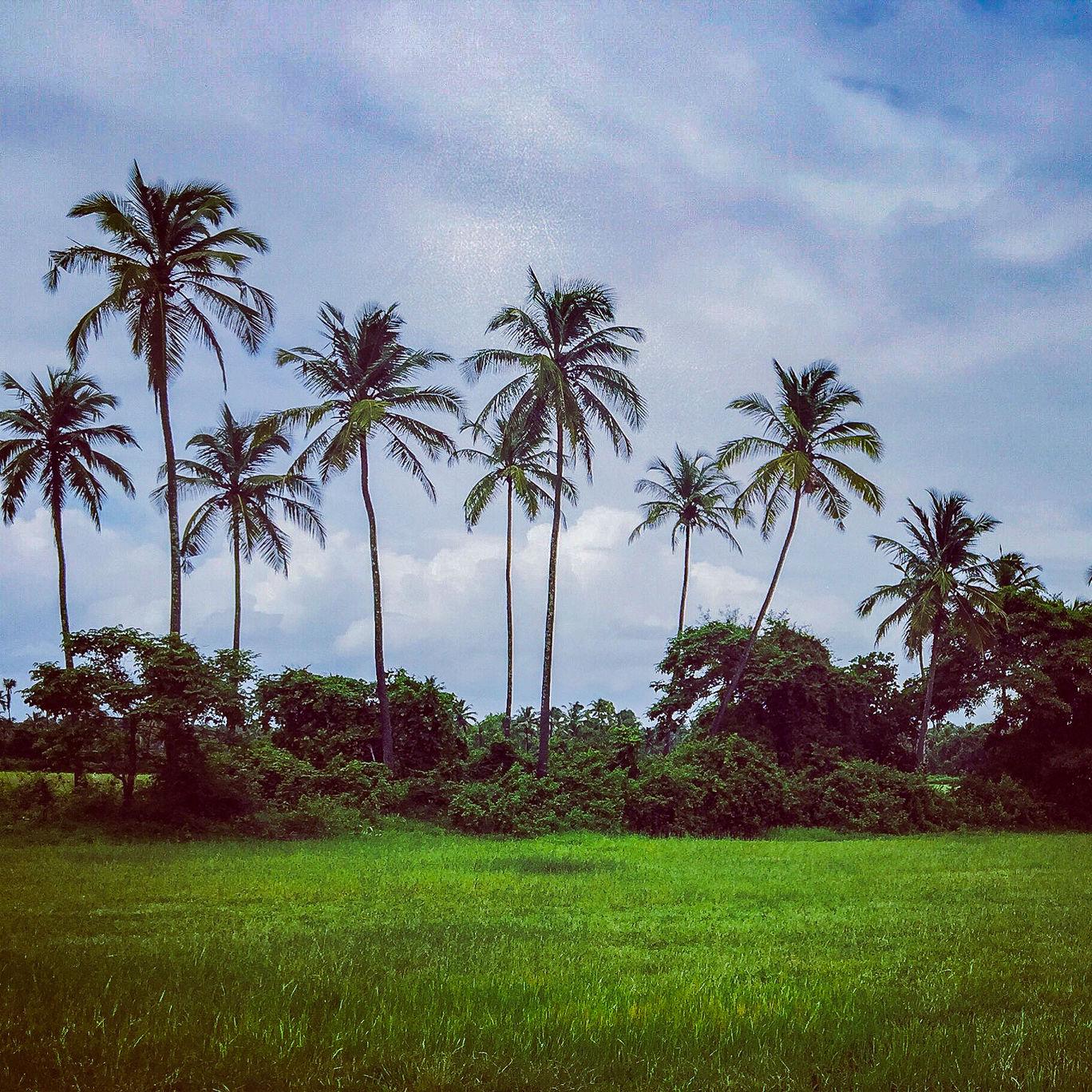 Photo of Goa By thewanderjoy