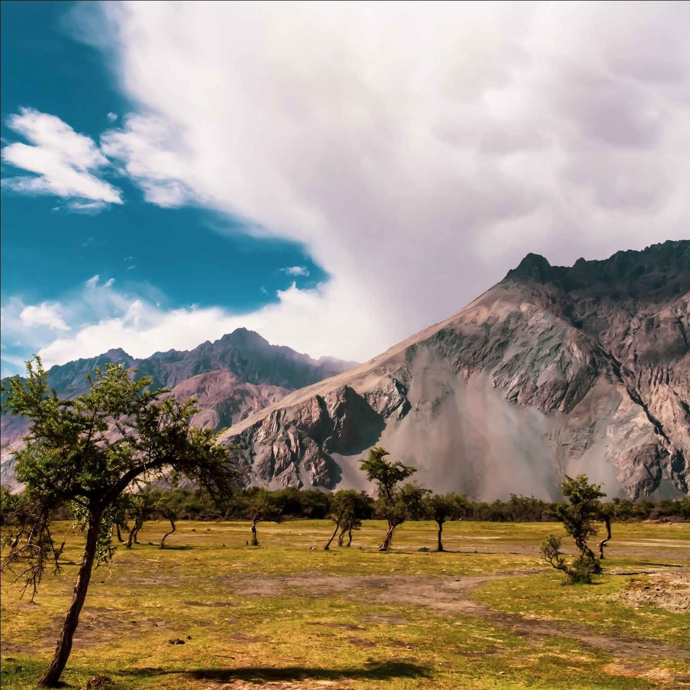 Photo of Nubra Valley By GVPIXEL
