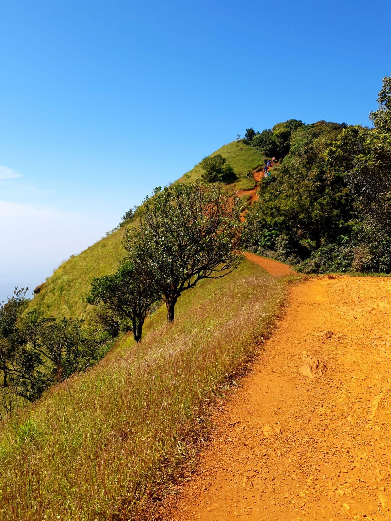 Photo of Kodachadri By anantha krishnan