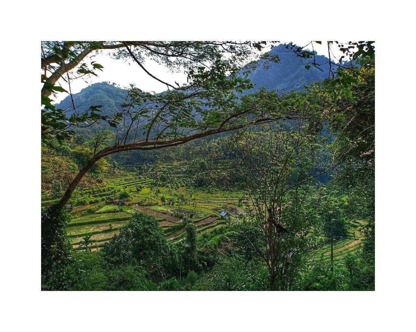 Photo of Bali By Kiran Menon