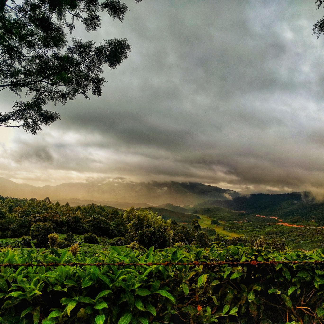 Photo of Munnar By devul