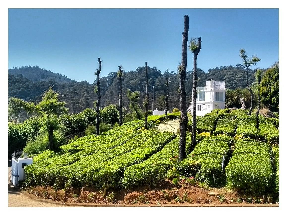 Photo of Coonoor By BornFromALens