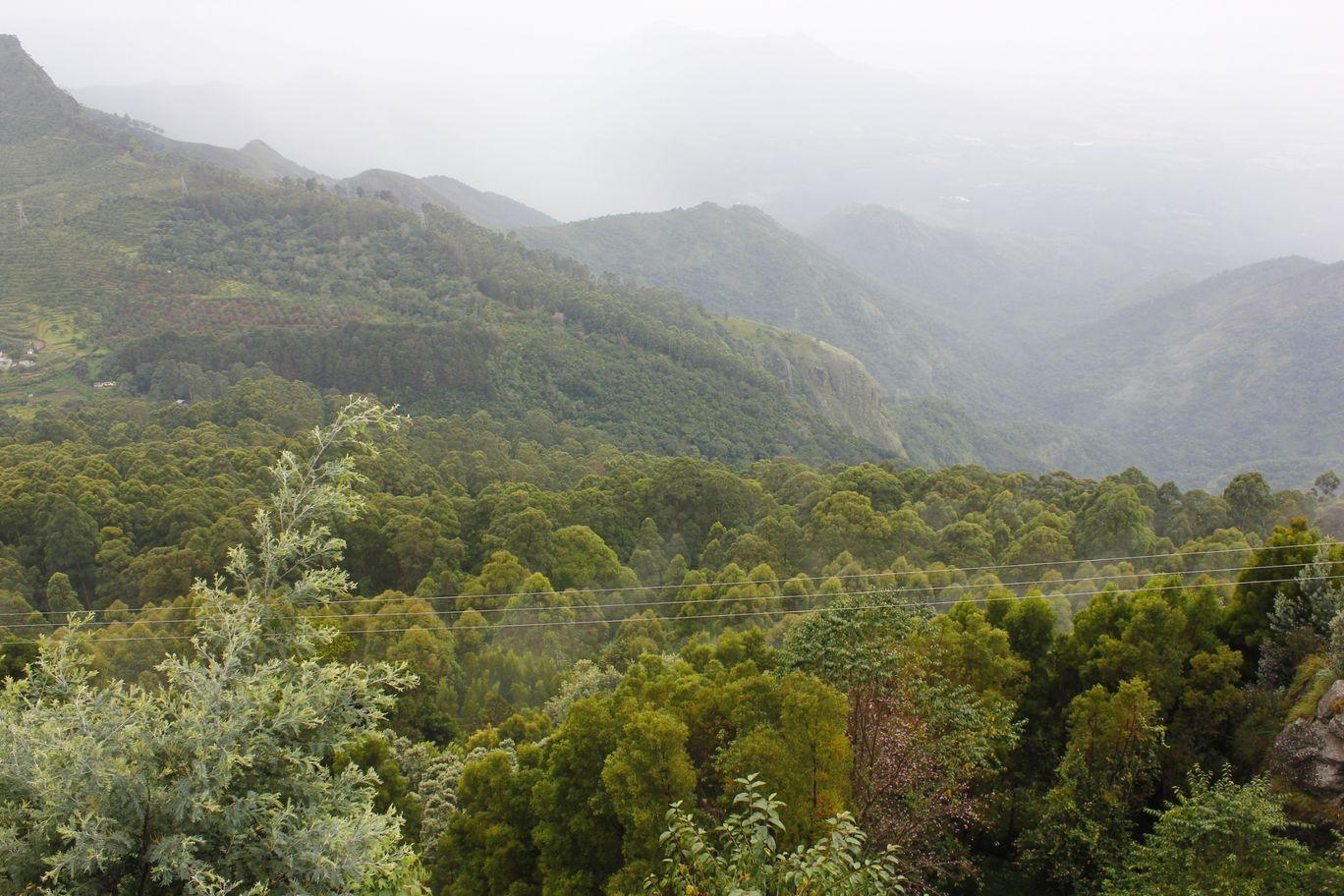 Photo of Kodaikanal By Vikash