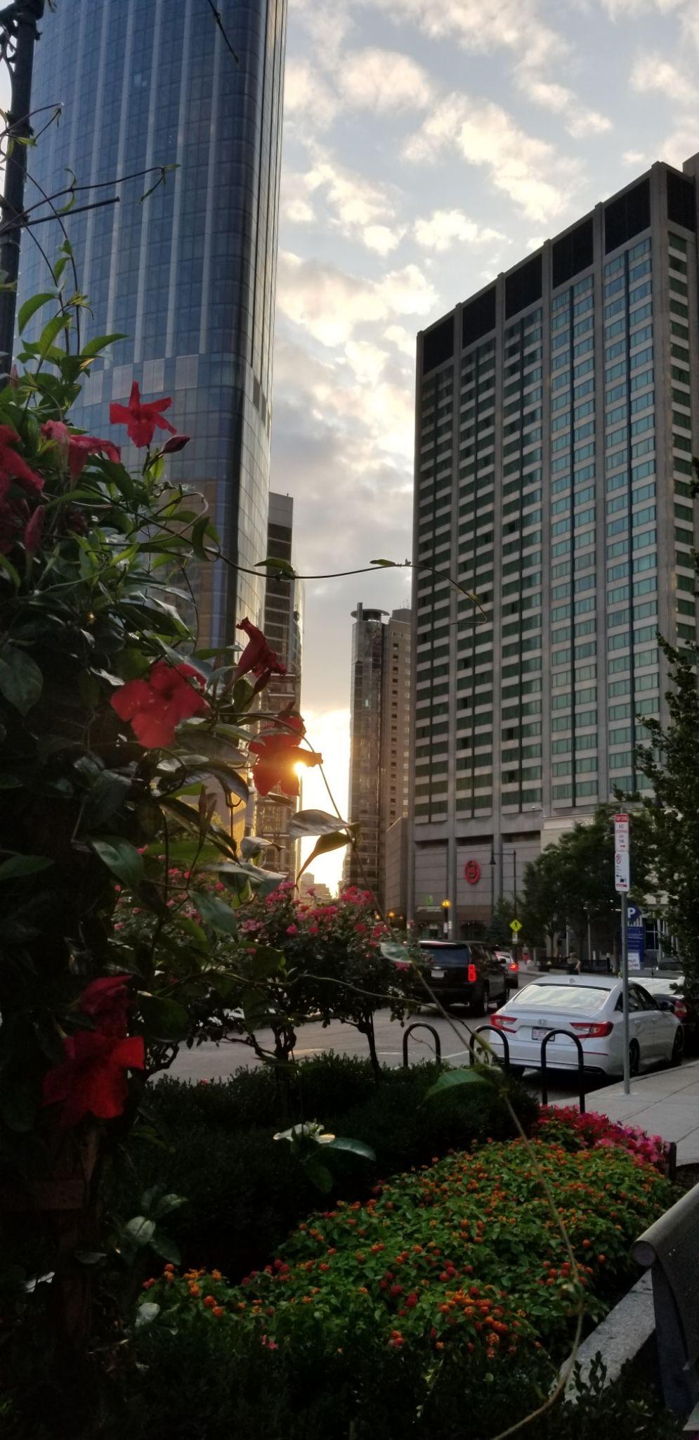 Photo of Boston By Shibya Pandey