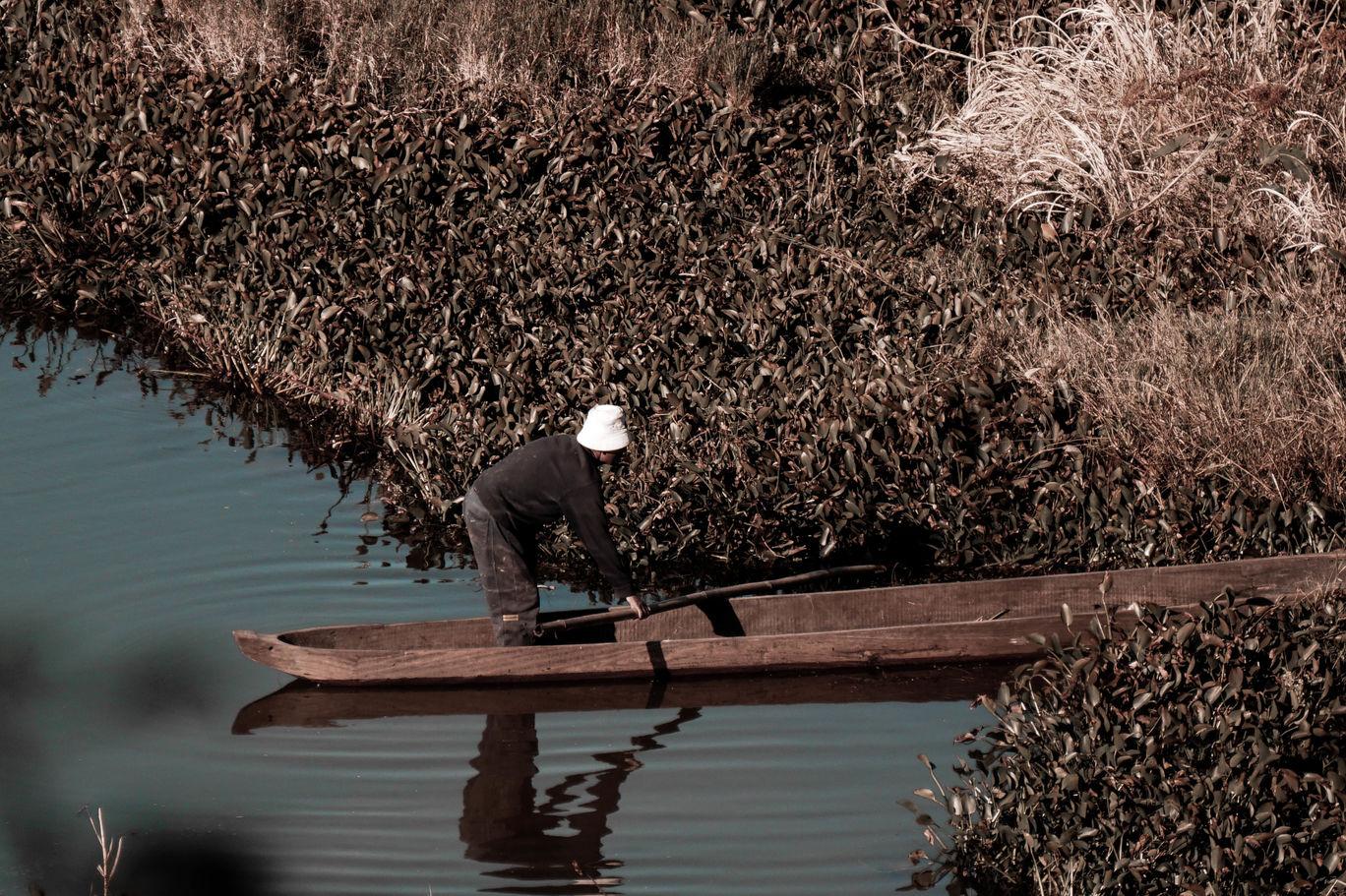 Photo of Loktak Lake By mitason n.k