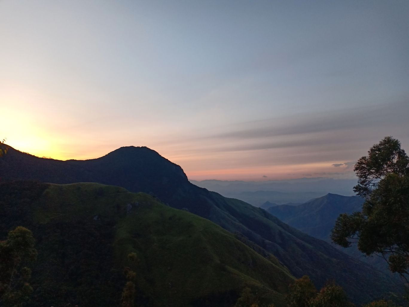 Photo of Munnar By Nehla