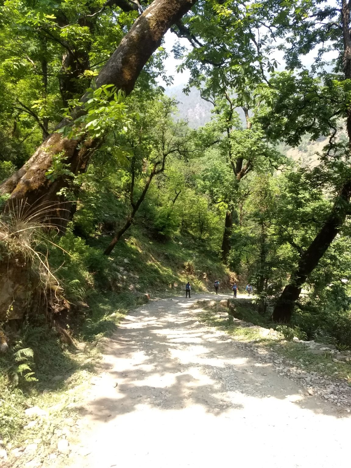 Photo of Uttarakhand By Samriddhi Khedulkar