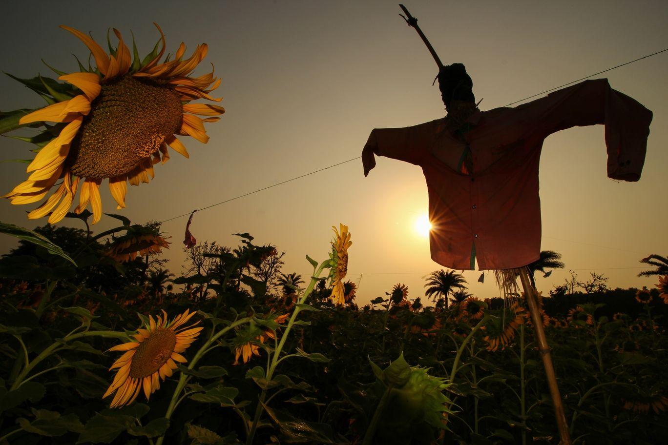 Photo of Mukutmanipur By Shibam Chand