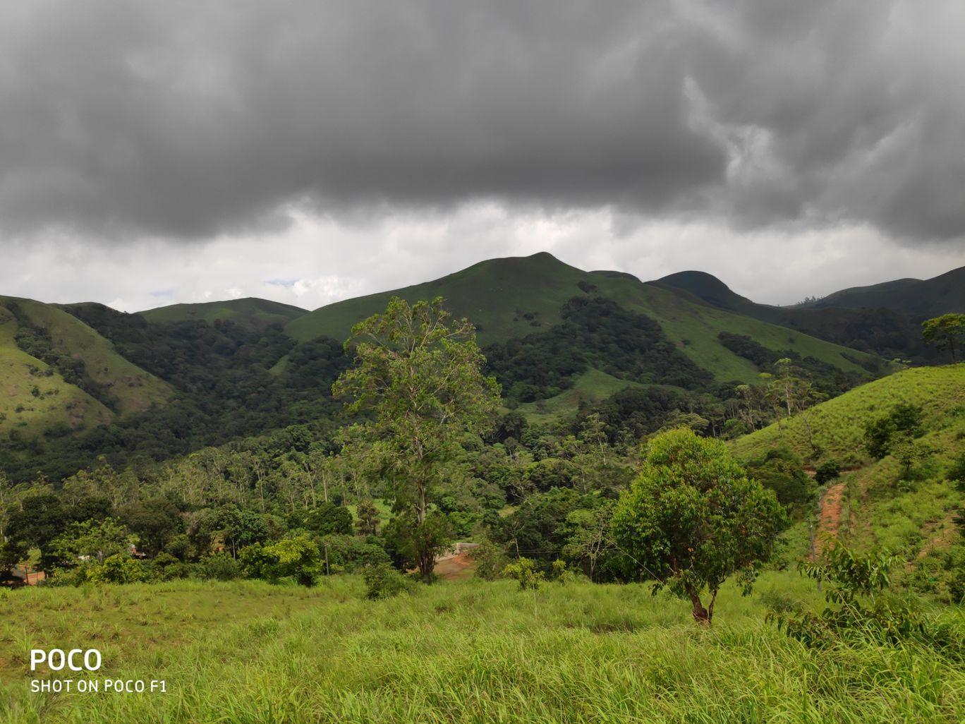 Photo of Munnar By chethan gowda