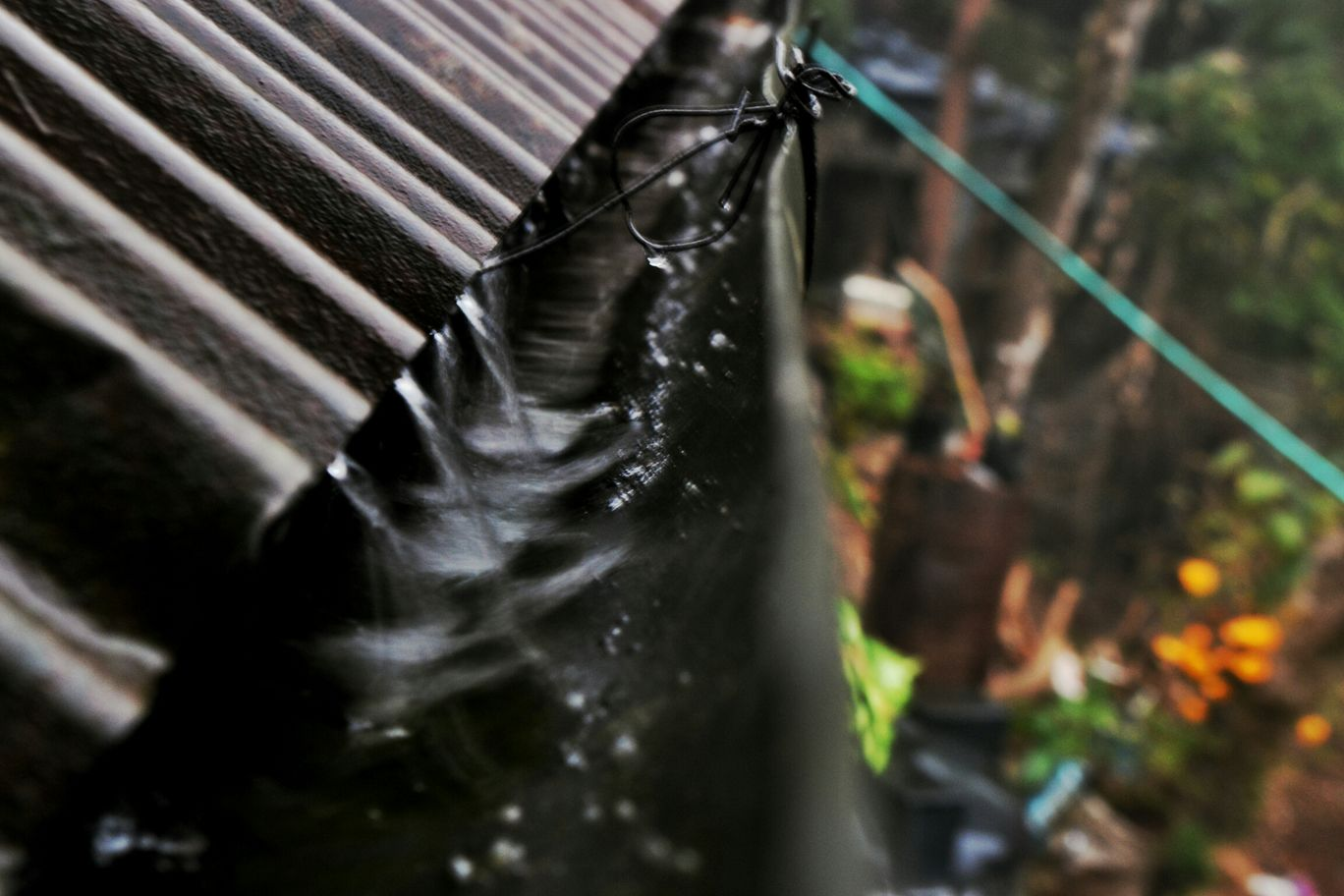 Photo of Darjeeling By The-Wangdi Xerpa