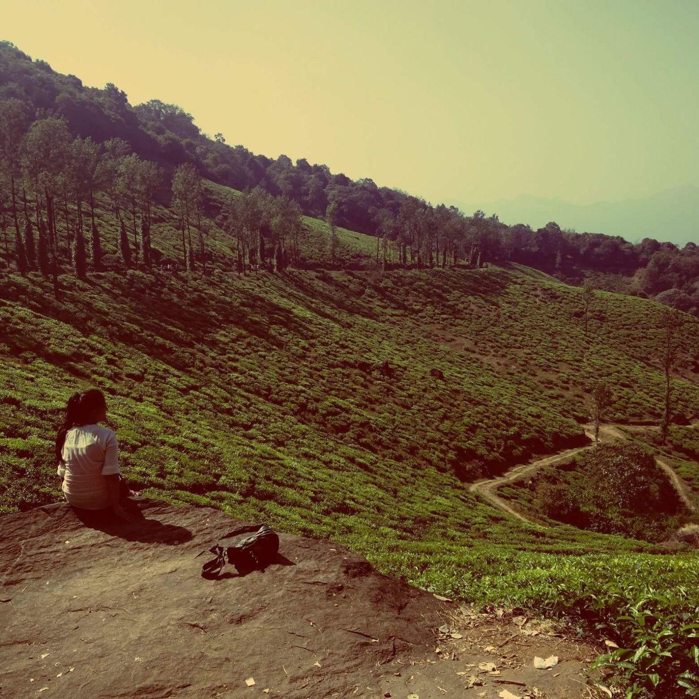 Photo of Chembra Peak By Yamini Joshi