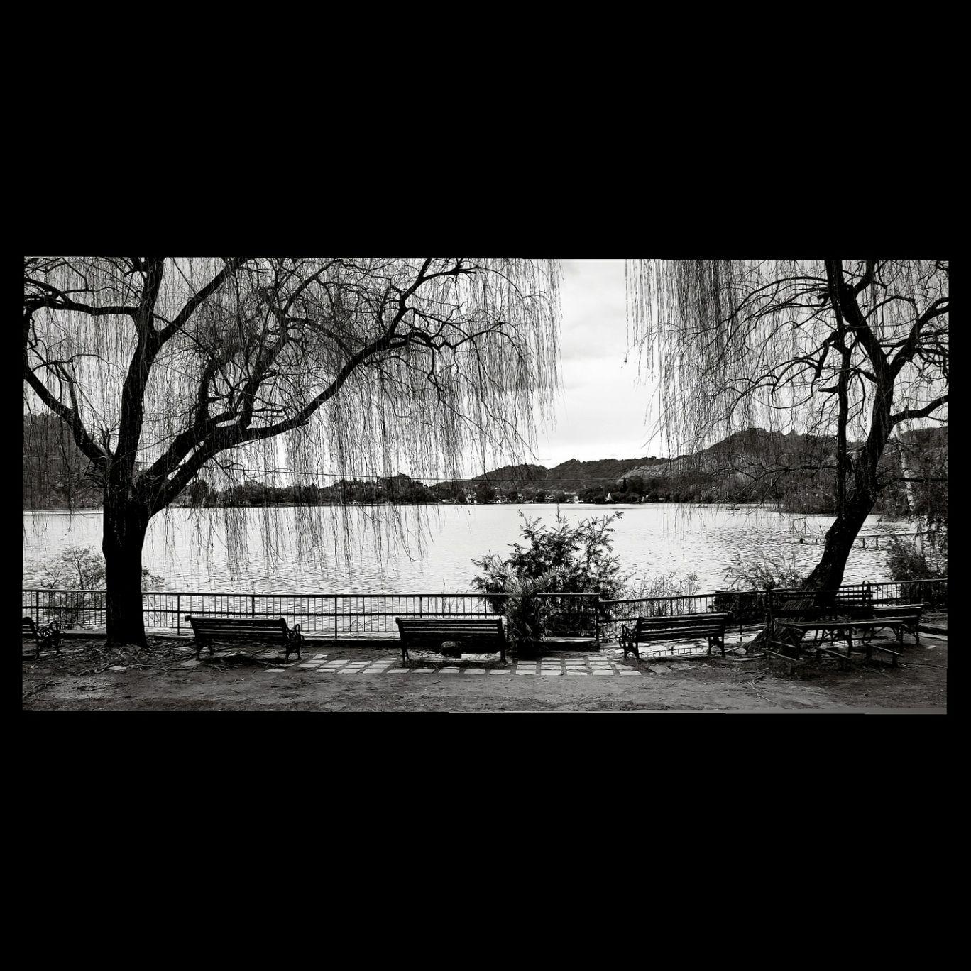 Photo of Mansar Lake By AJAY