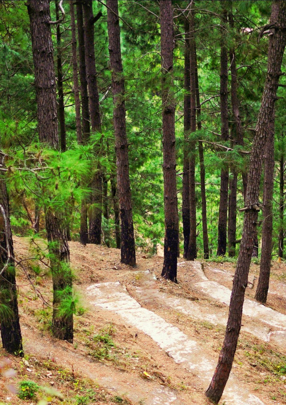 Photo of Himachal Pradesh By Sumantha Sharma