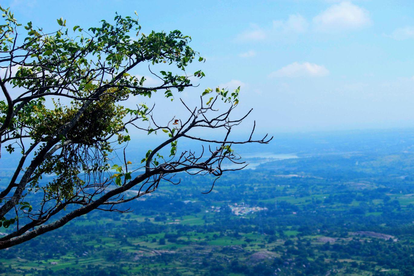 Photo of Savanadurga State Forest By Nithin Dsouza