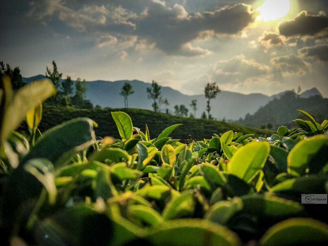 Photo of India By Adithya Narayanan