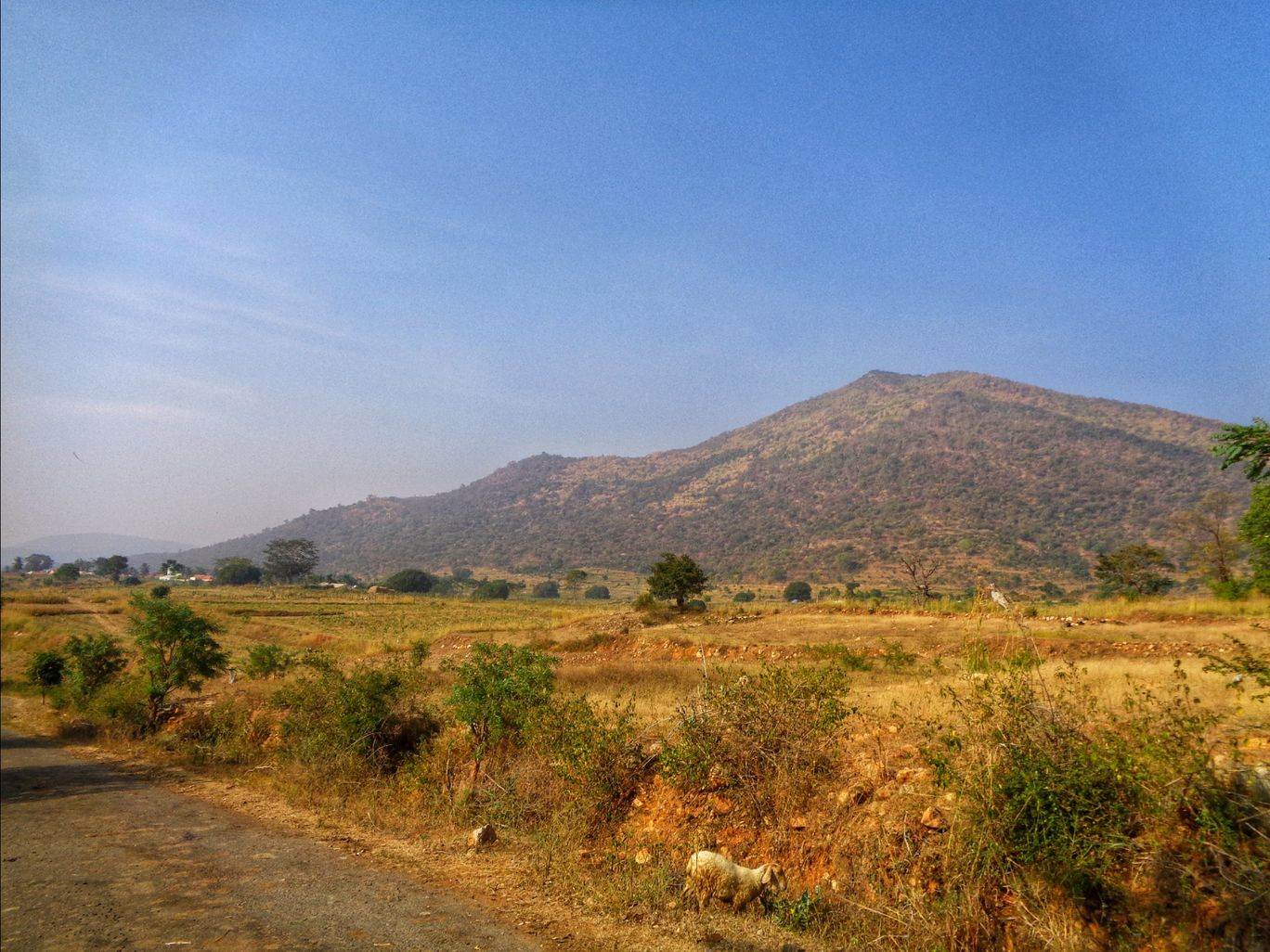 Photo of Dubbagauli By Nitin Chandavar