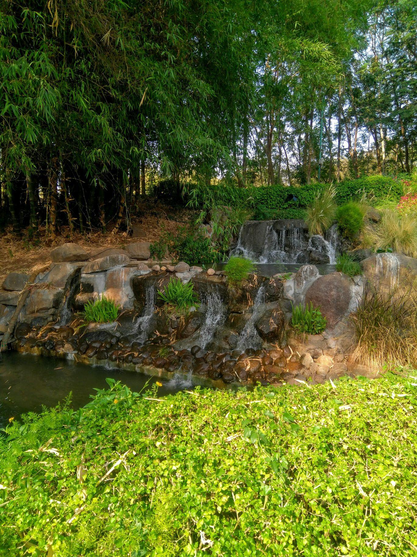 Photo of Pune-Okayama Friendship Garden By Shubham Poplai