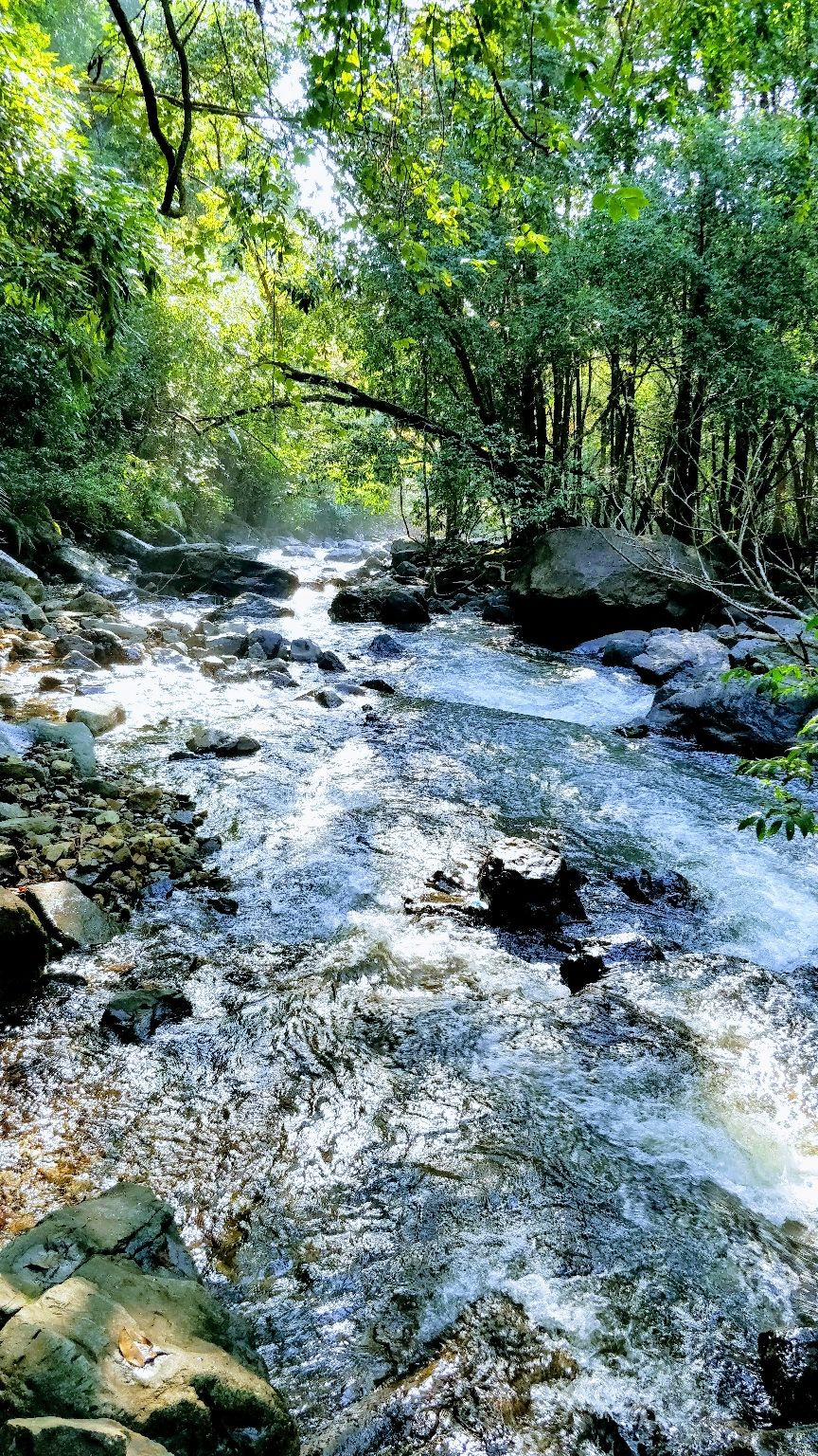 Photo of Dudhsagar Falls By lalit akhade