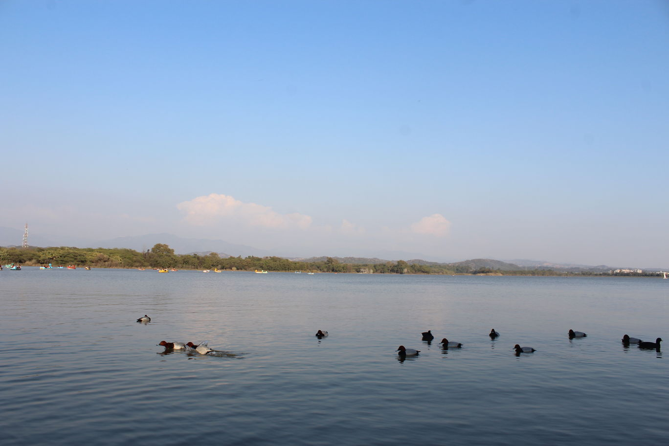 Photo of Chandigarh By Dibyajit Sur