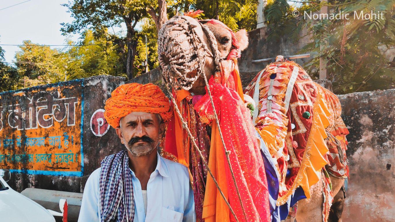 Photo of Udaipur By Nomadic Mohit