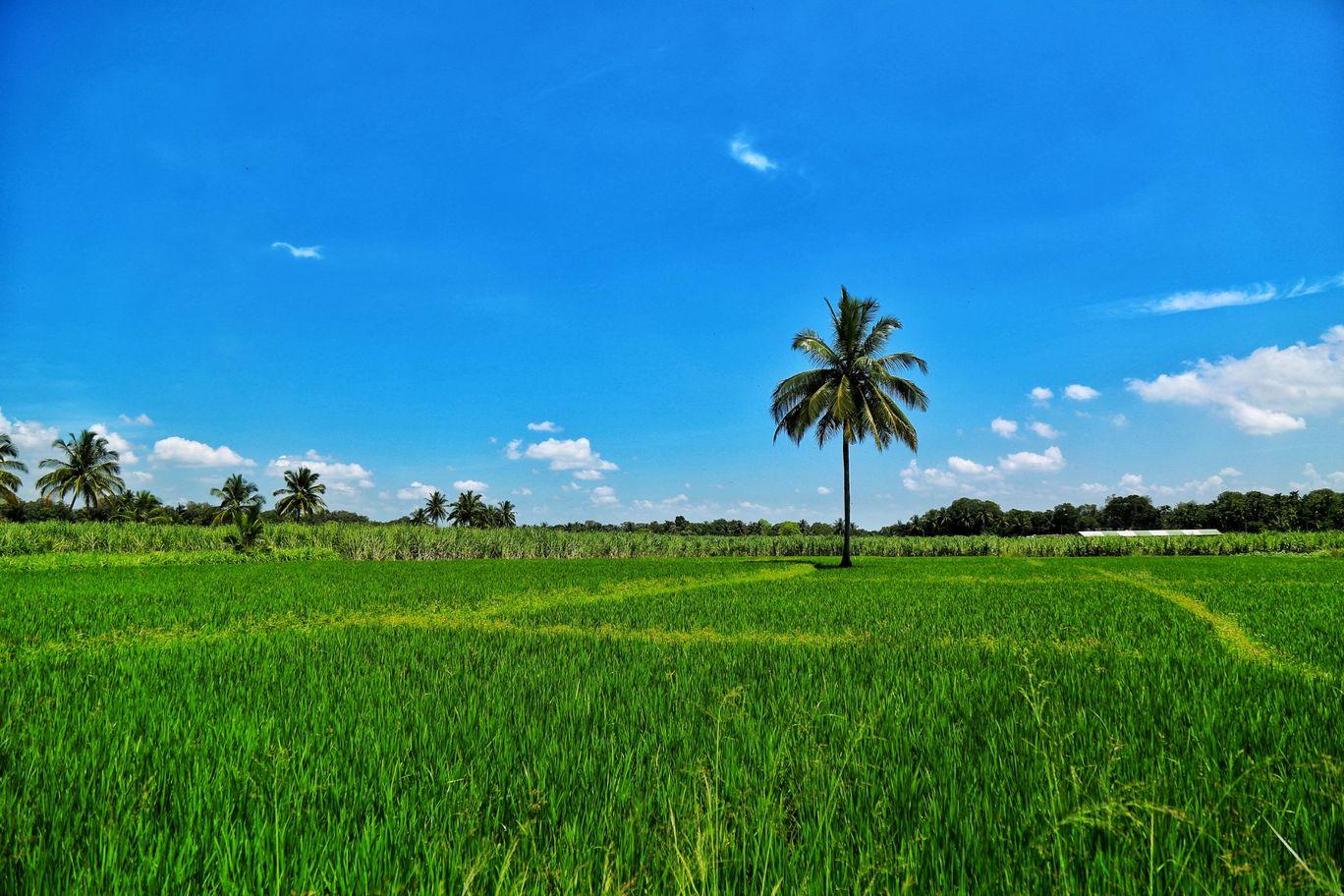 Photo of Srirangapatna By Jotiba Gondkar