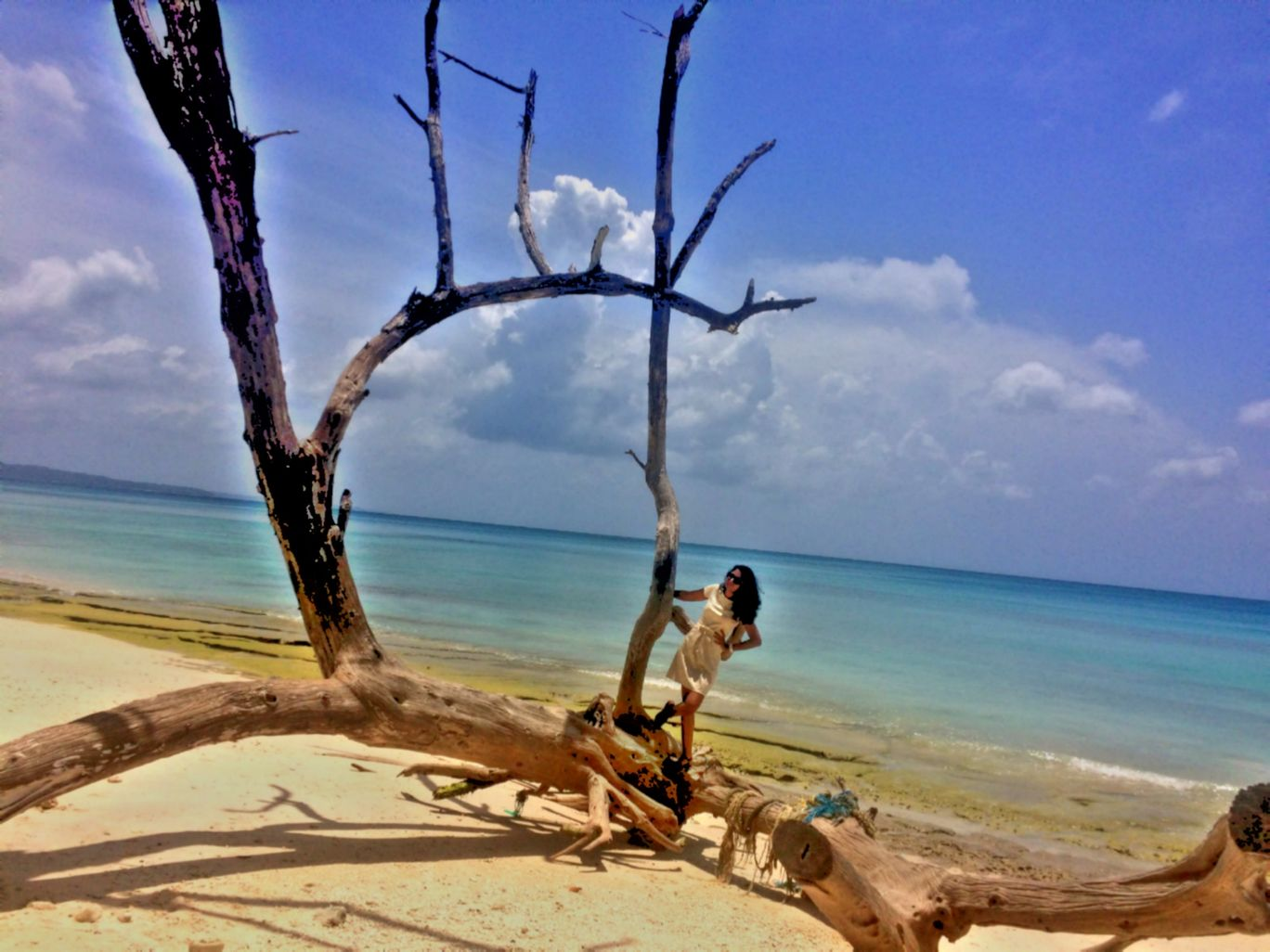 Photo of Havelock Island By Nidhi