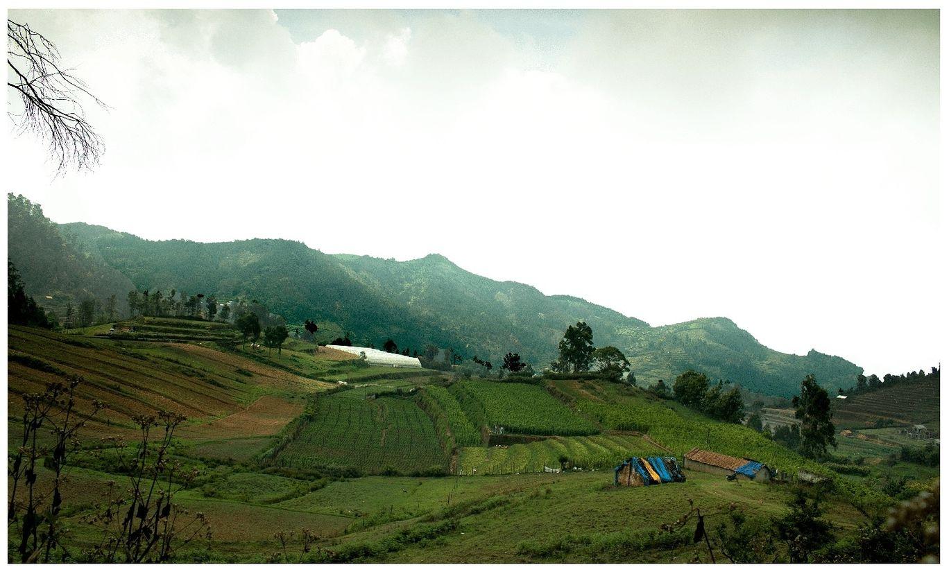 Photo of Kodaikanal By Veer