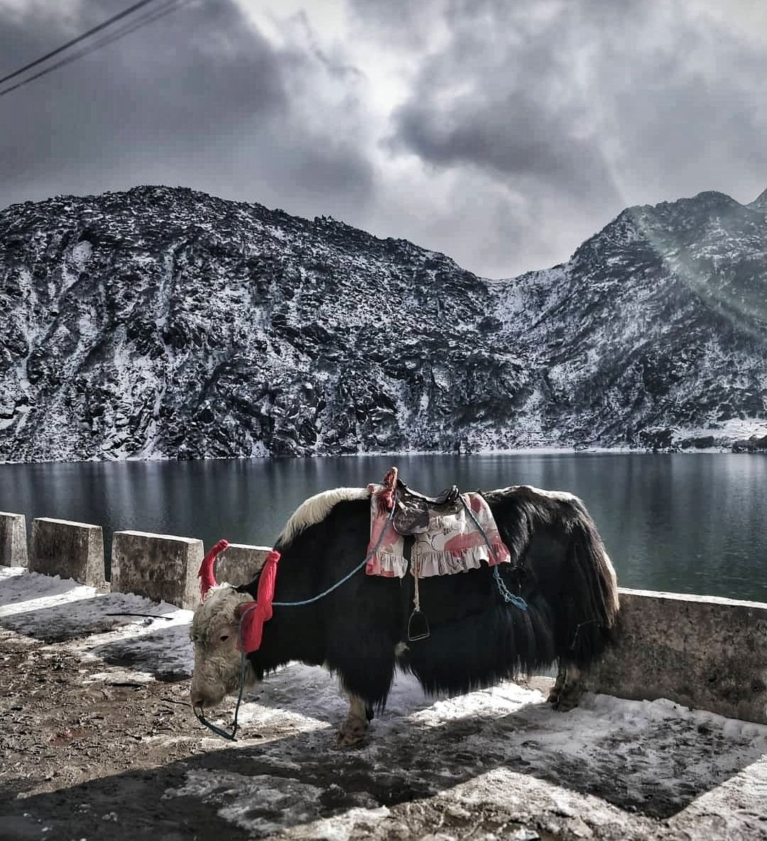 Photo of Tsongmo Lake By devesh