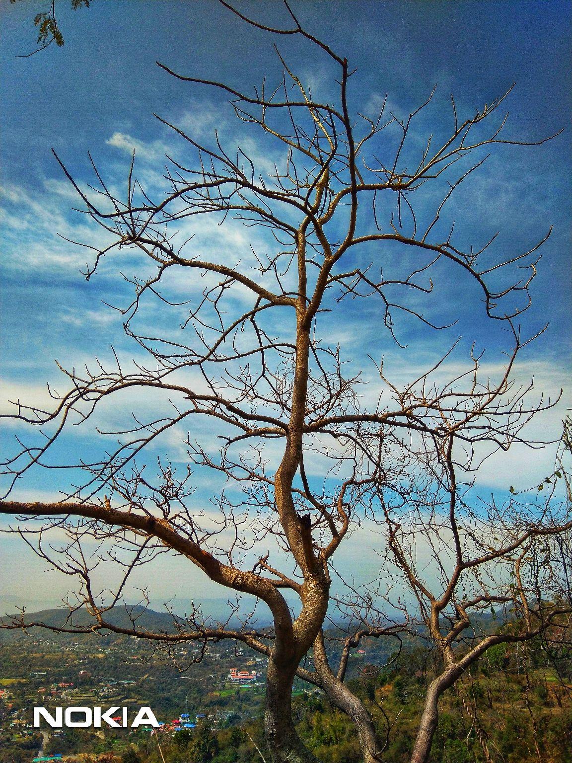 Photo of Uttarakhand By Mohit Mishra