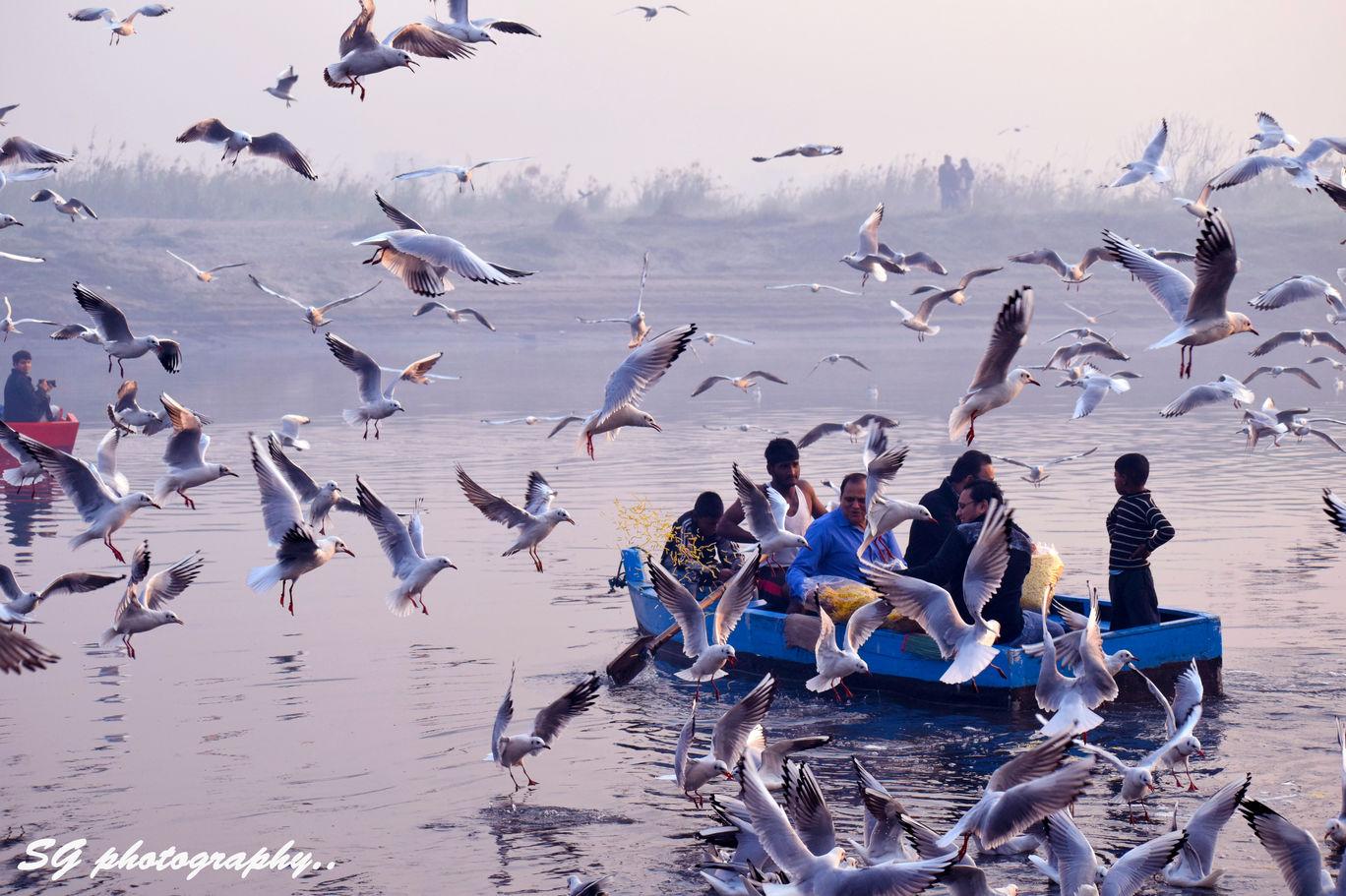 Photo of Yamuna Ghat By Sangam Garg