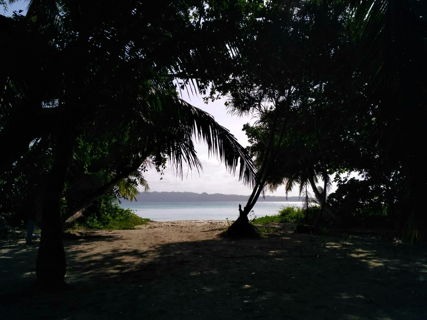 Photo of Andaman and Nicobar Islands By Soumya S. Dash