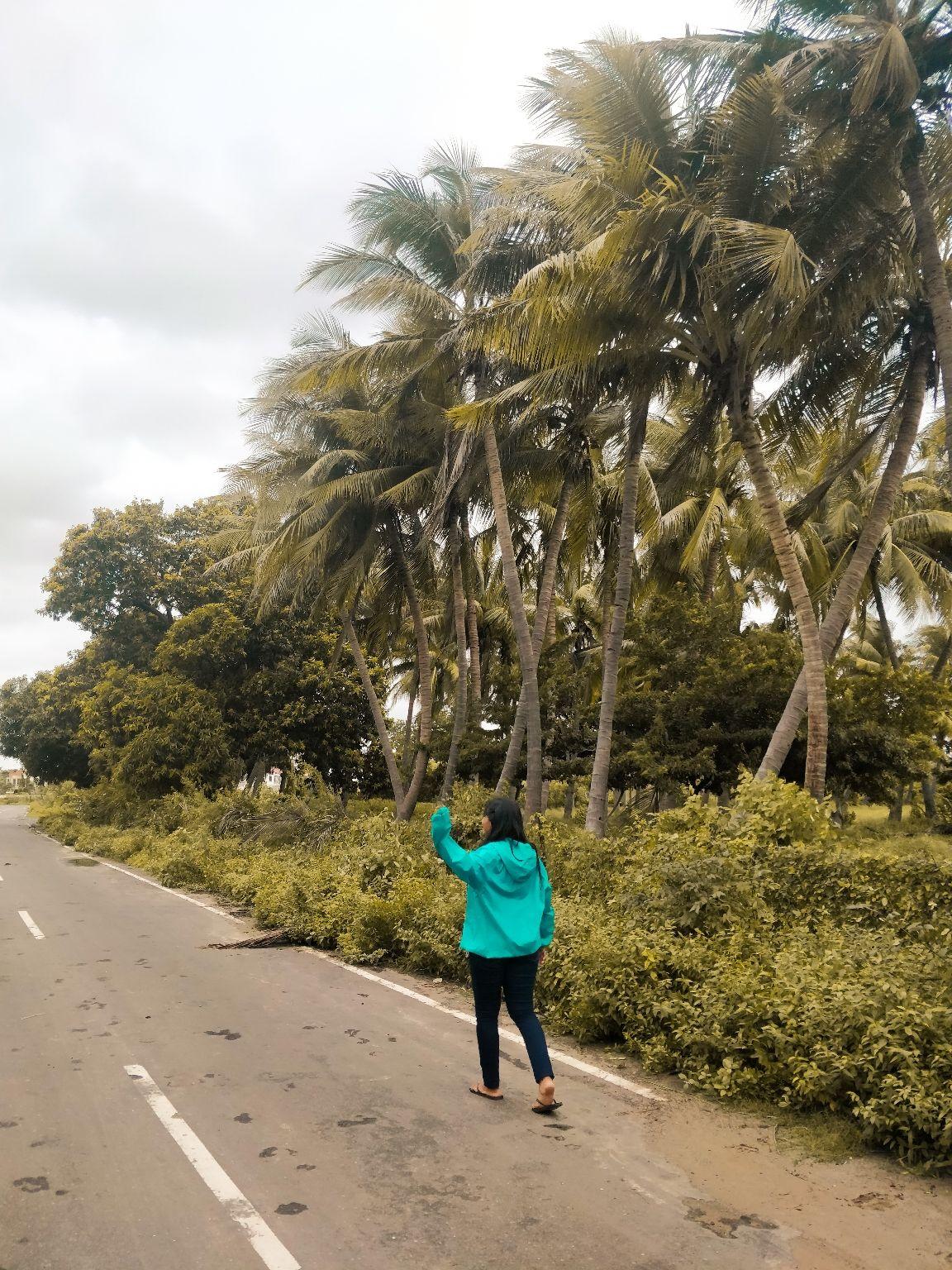 Photo of Vadodara By Ankita Pravasi