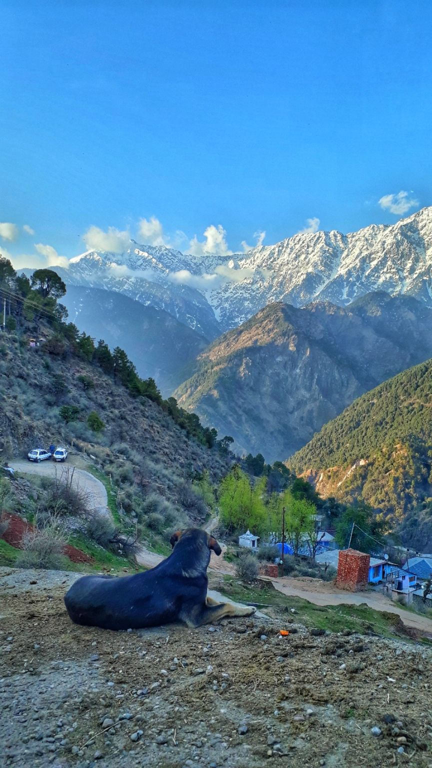 Photo of Dharamshala By Sherin