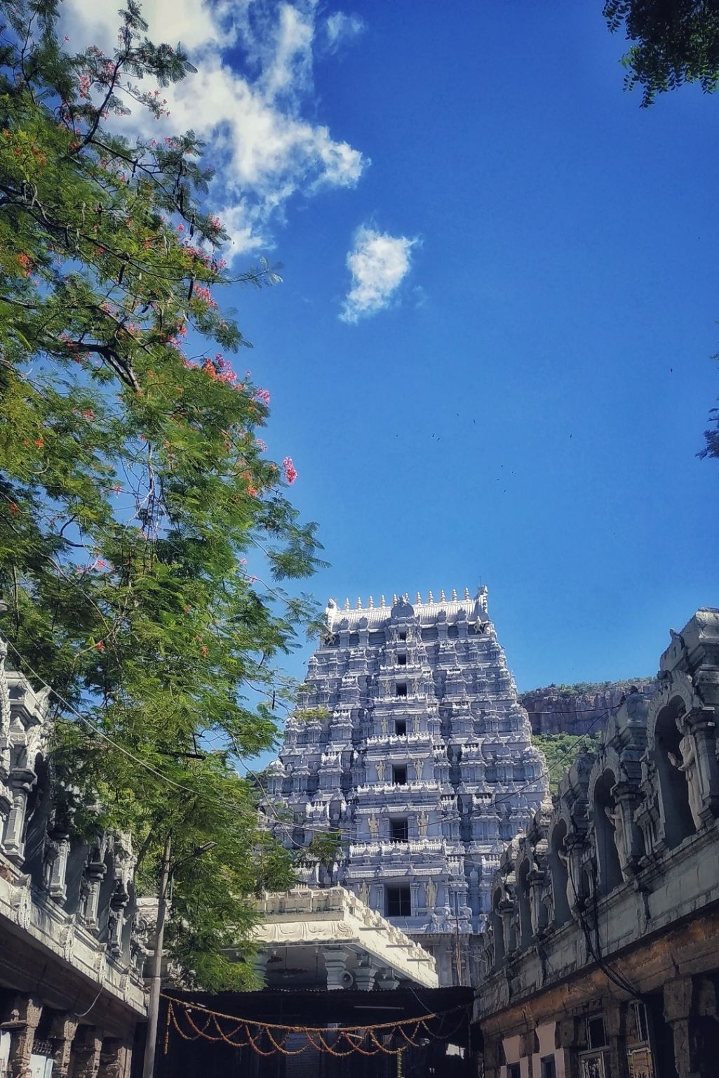 Photo of Tirupati By harsh