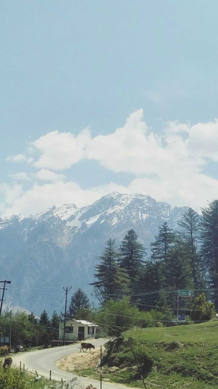 Photo of Auli By Falak Shah
