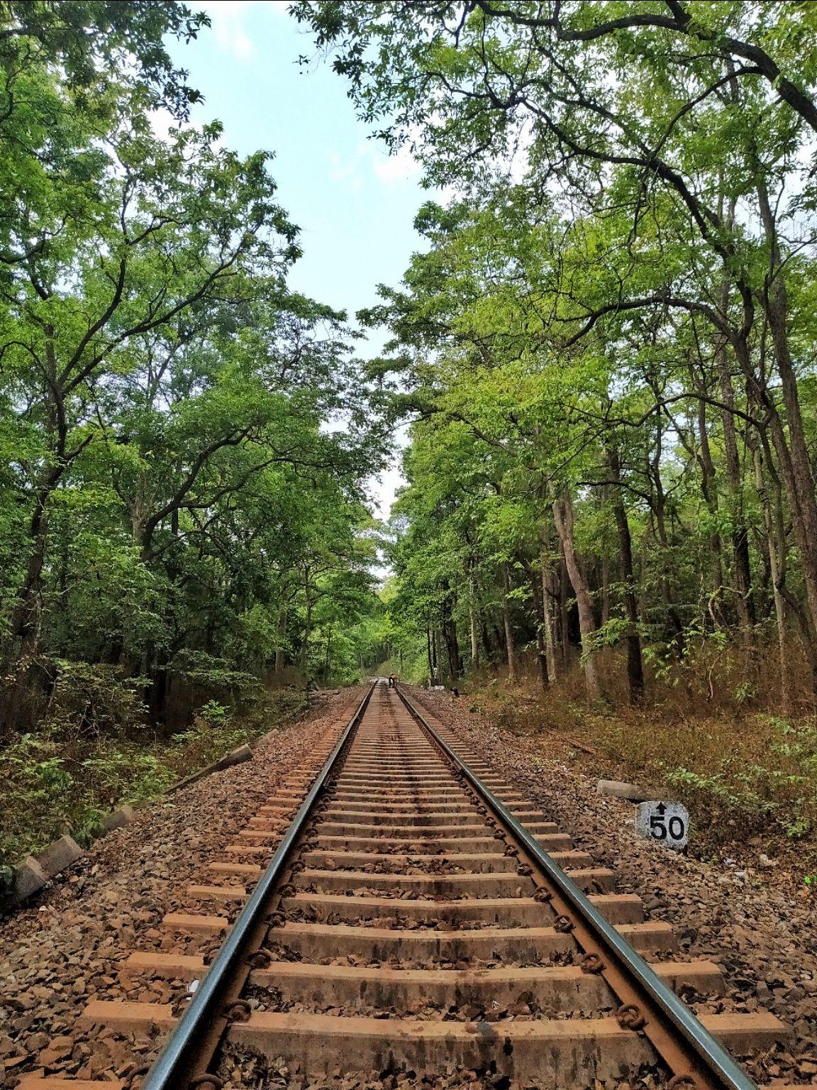 Photo of Goa By Pixalgram