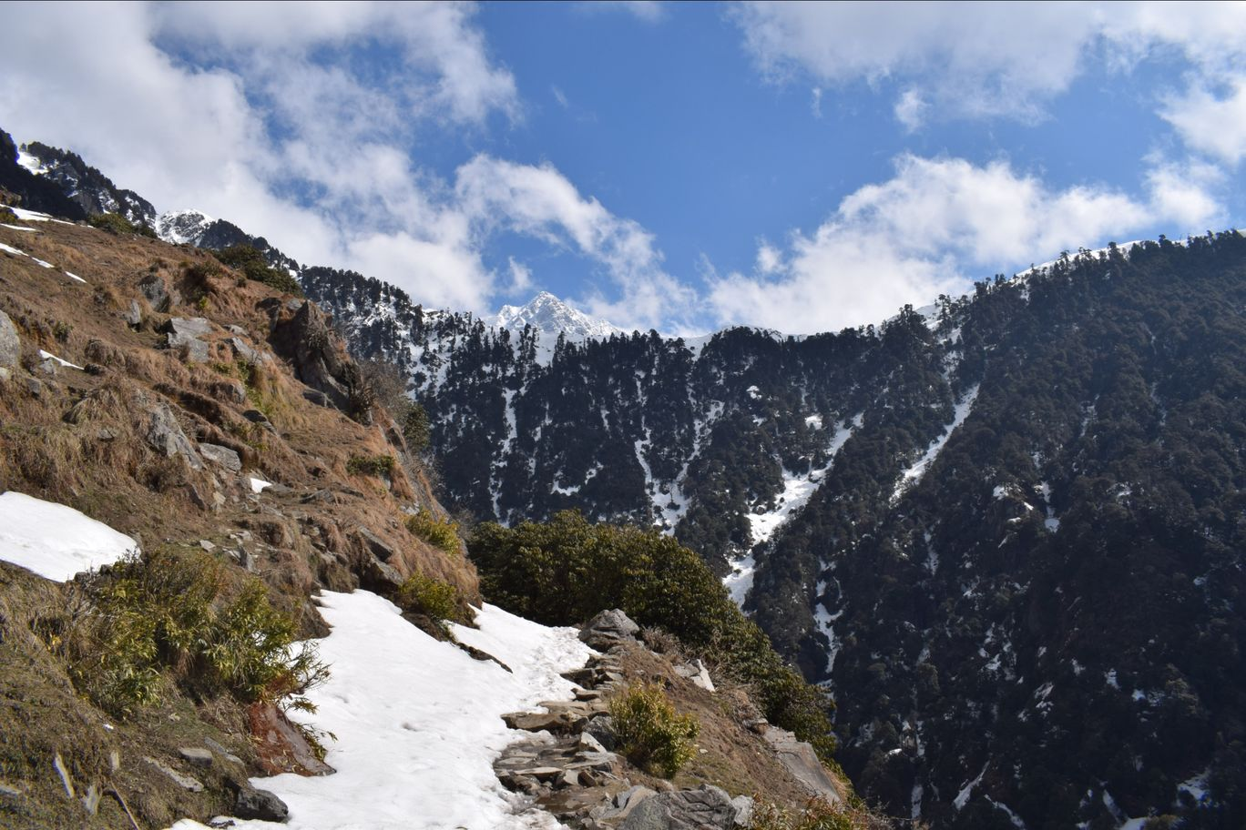 Photo of Triund Trek By shiv shankar shah