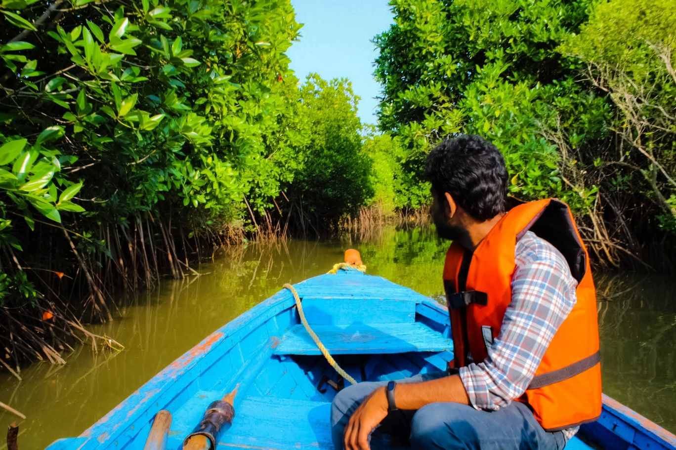 Photo of Pichavaram Mangrove Forest By Manoj P