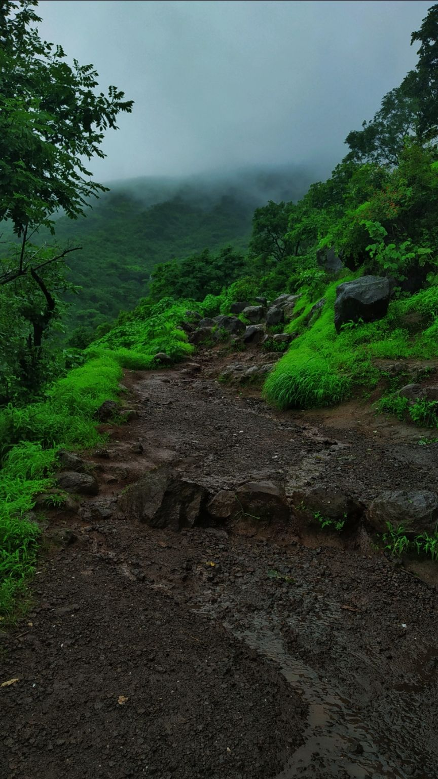Photo of Sinhagad Fort By yashu kaur
