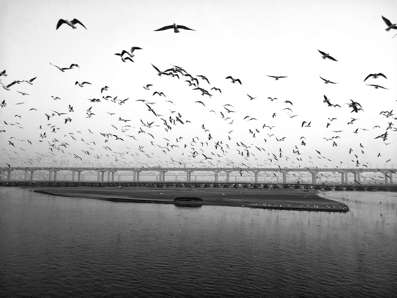 Photo of Triveni Sangam By Rashid Khan