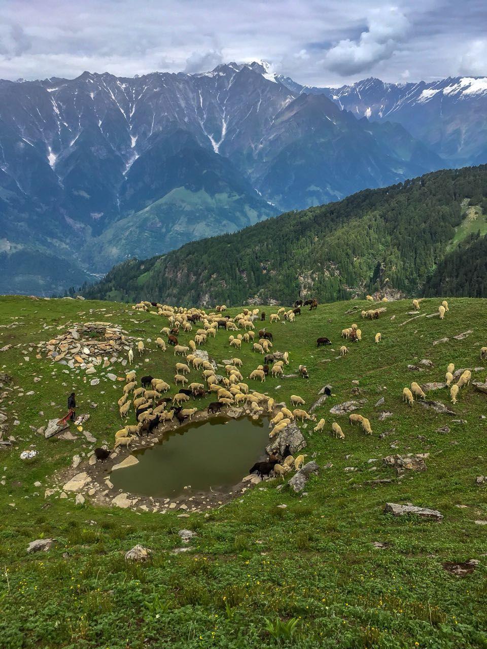 Photo of Parashar Lake By MAnish Sabnani