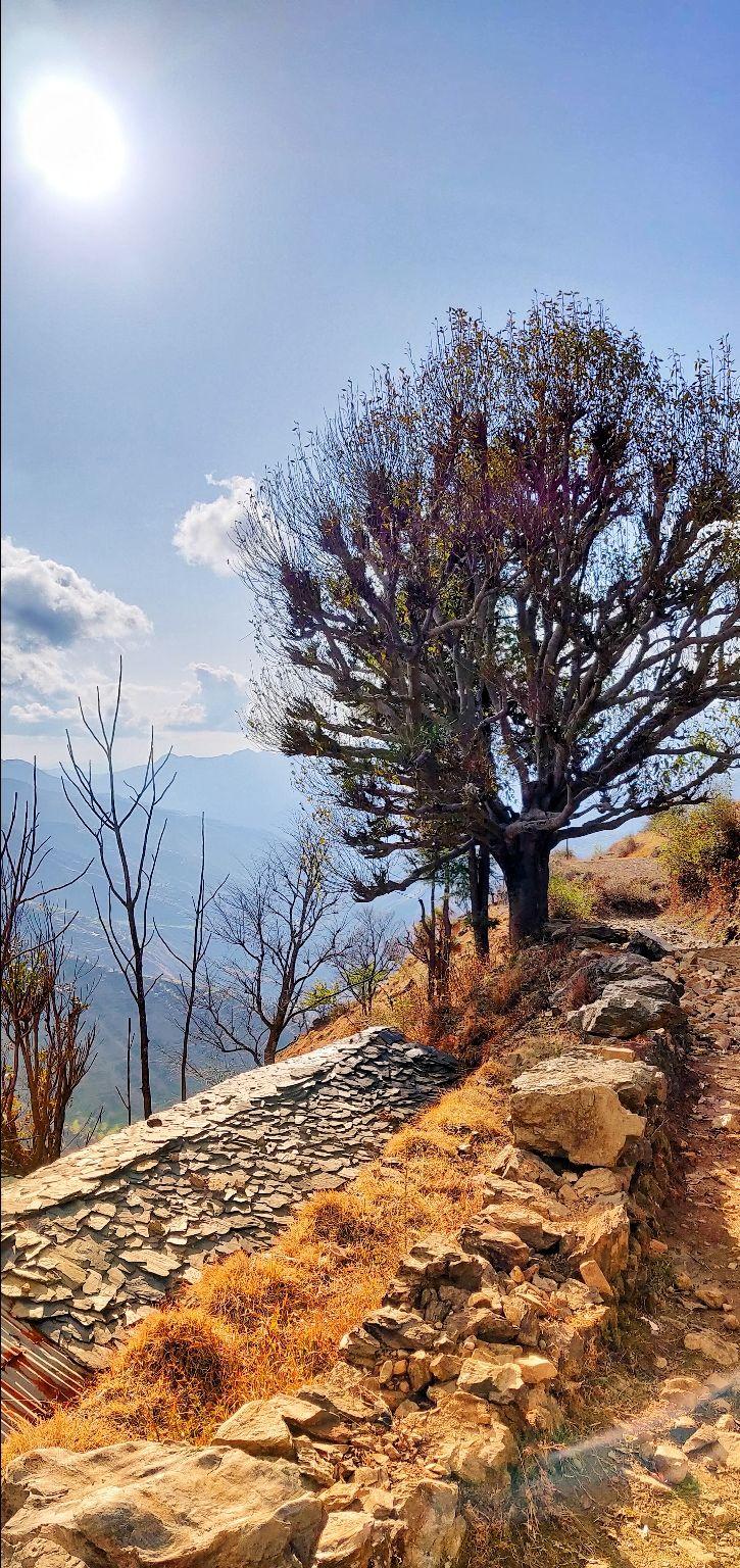 Photo of Nag Tibba Top By Vashisht Gupta