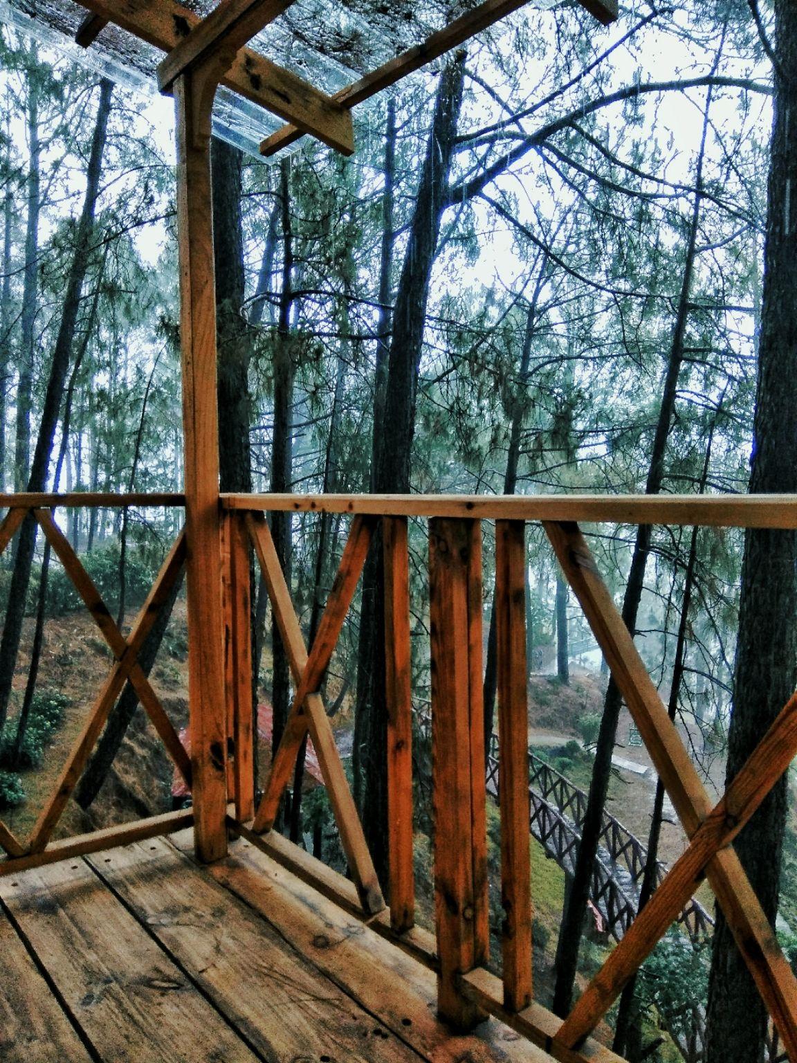 Photo of Kasauli Hills Resort By Arushi Mathur