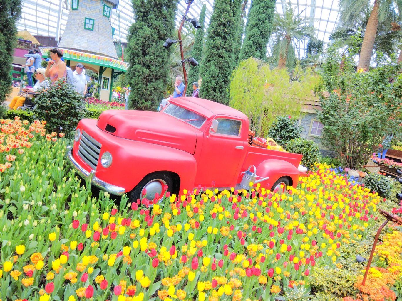 Photo of Marina Gardens Drive By Ratan Tatikonda