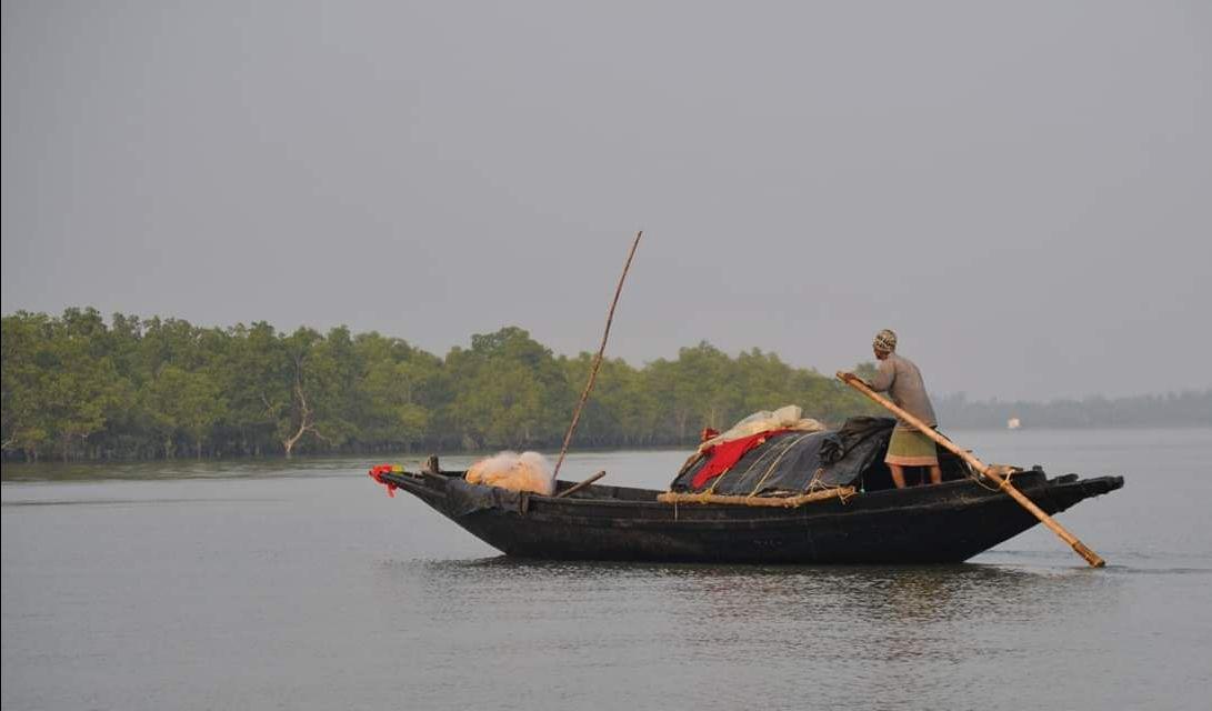 Photo of Jharkhali Tourism Hub By Sudipto Paul