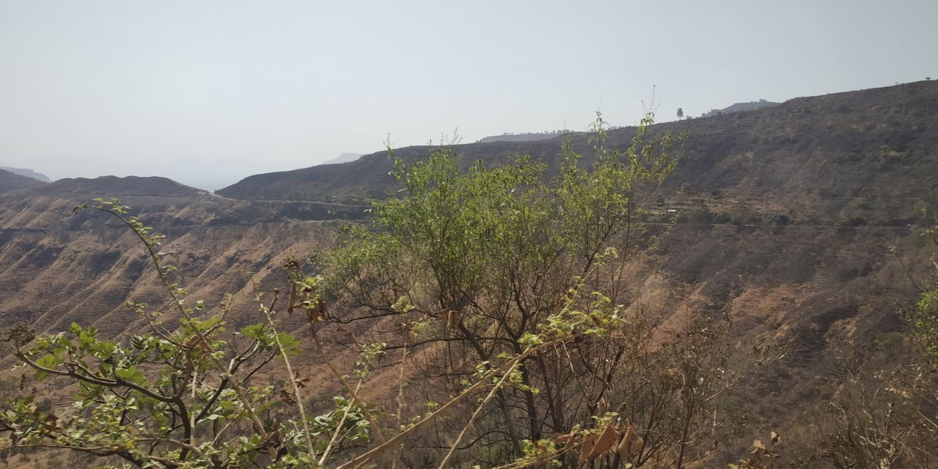 Photo of Mahabaleshwar By Diya Moolya